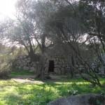 Nuraghe Albucciu - Arzachena