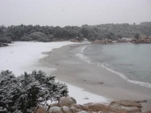 Neve a bassa quota
